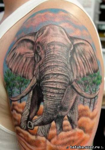 Значение тату слон